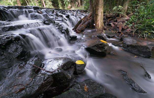 常緑の森の美しい滝、