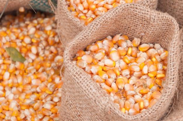 Крупы и семена кукурузы