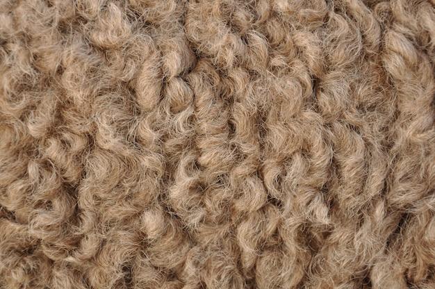Волосы верблюда