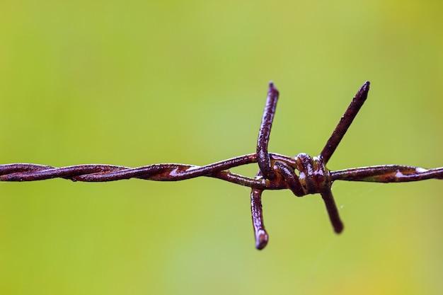 古いさびた有刺鉄線のフェンスとクモの巣は雨で濡れていました。