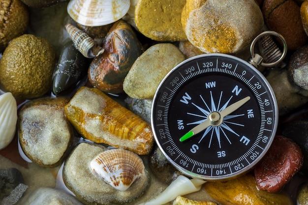 小石や貝殻を川辺でコンパスします。