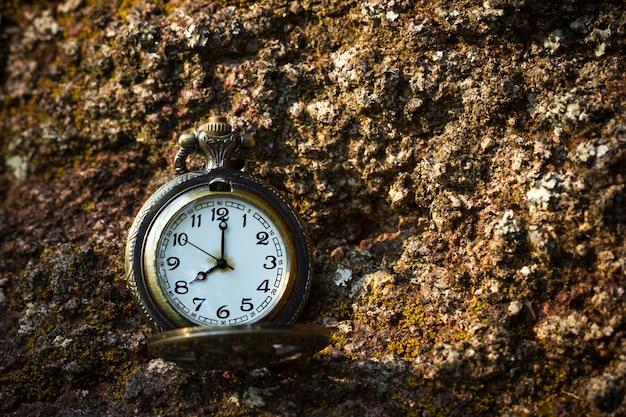 森と朝の日差しの中で岩の上に置かれた懐中時計。
