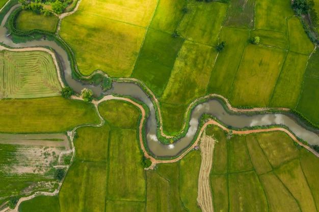 詐欺的な川のフィールドの空撮
