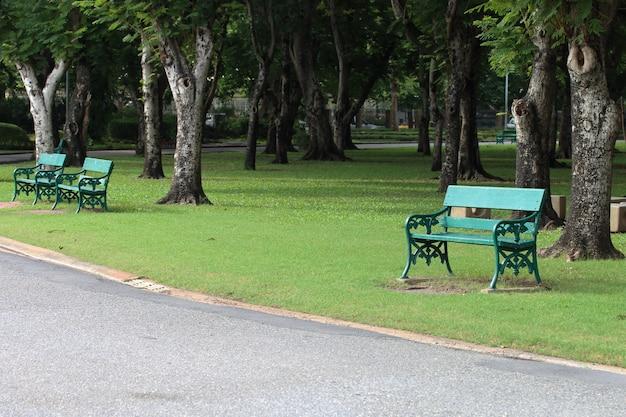 Зеленые скамейки рядом с дорожкой в парке.