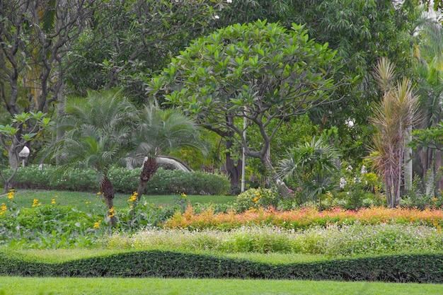 庭には植物や花が飾られています。