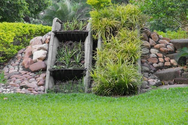 庭を飾るための植物。