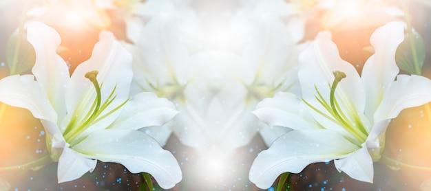 ユリの花束。ユリは植物の属です