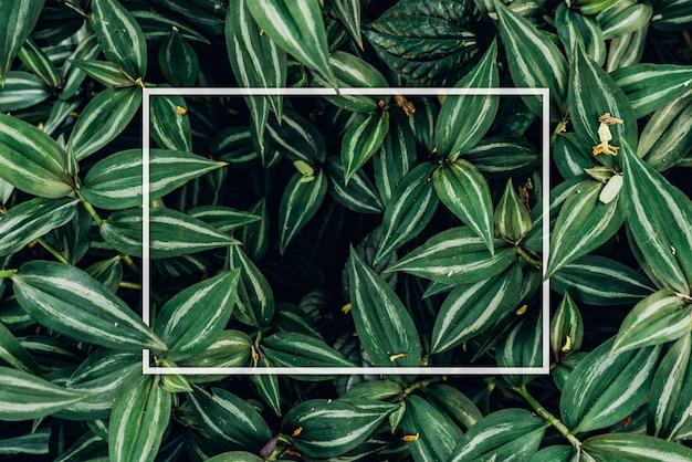 紙カードのメモと葉で作られた創造的なレイアウト。