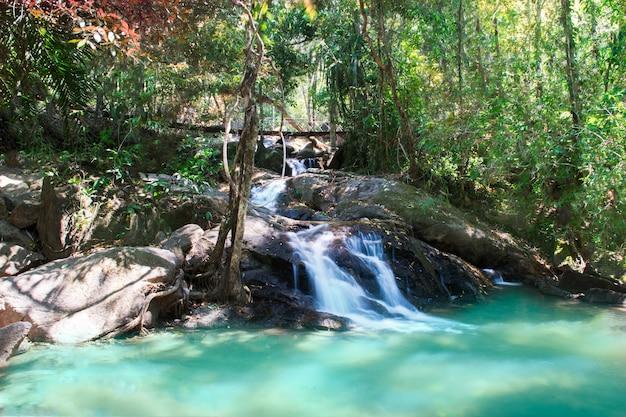 滝は美しく、水は魚と一緒に流れています