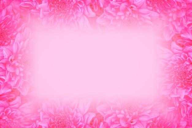 ピンクのバラの花の背景を閉じる