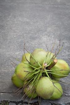 Кокосовая пальма на фоне цементного пола