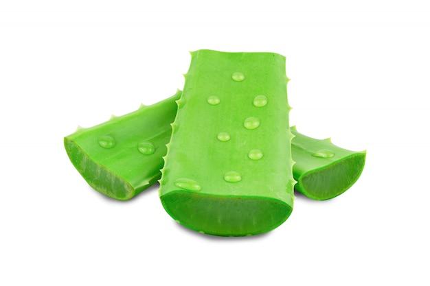 Свежее изолированное алоэ вера. очень полезное растительное лекарственное средство для ухода за кожей и ухода за волосами.