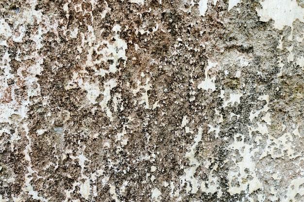 小さな白い石と灰色のコンクリート壁の断片。背景のテクスチャです。修理、デザインコンセプト。