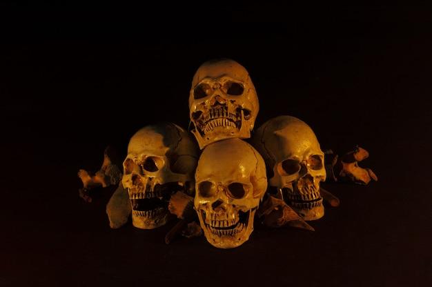 暗い床に置かれた頭蓋骨の山