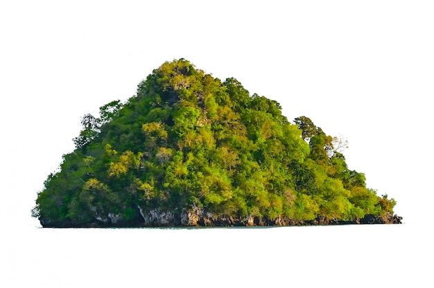 背景から分離された緑の海の白い背景の真ん中に島を分離します。