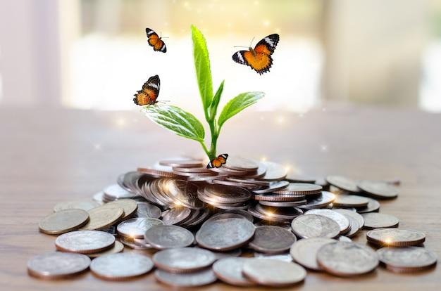 お金の成長お金を貯める