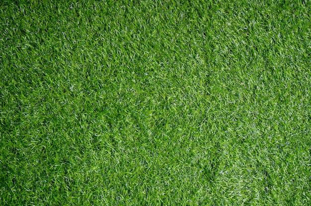 Поле зеленой лужайки
