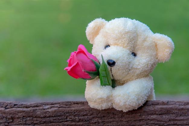 Милый плюшевый медвежонок сжимая красную розу в своих оружиях на деревянной предпосылке, космосе экземпляра. валентина концепция