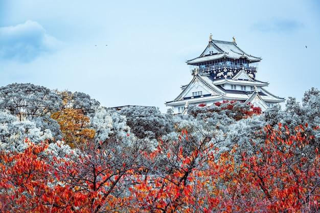 Красивый зимний замок в осаке зимой