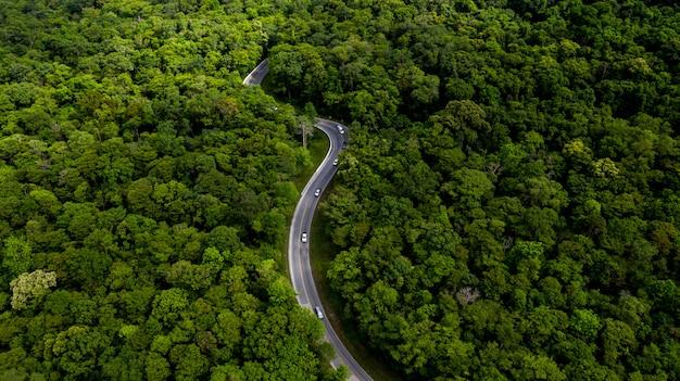 車、林道を通って行く道と熱帯の木の森の空撮。