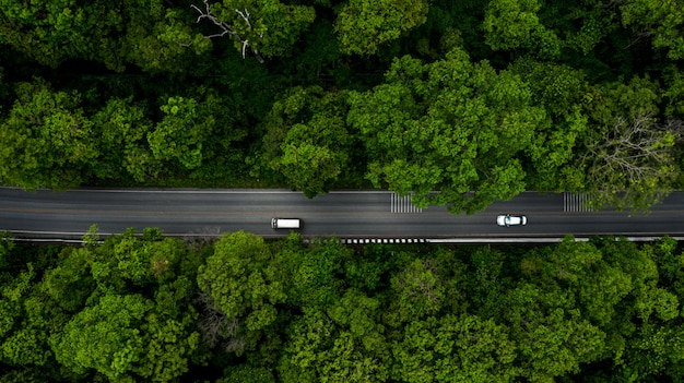 Лесная дорога, вид с воздуха на тропический лес с дороги, проходящей через с автомобилем.