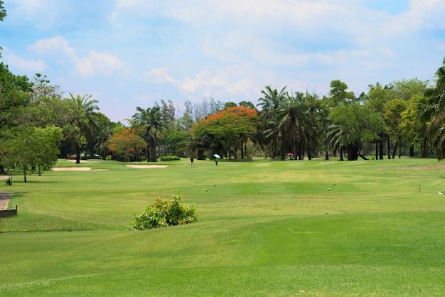 Поле для гольфа, где красивый газон