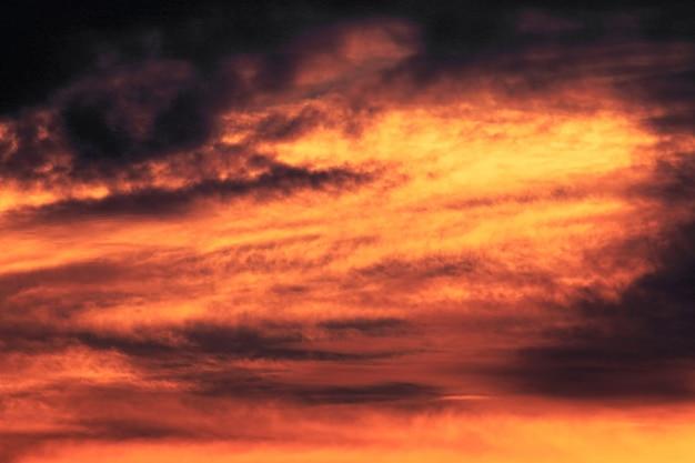 夕焼けの金色の空のビュー