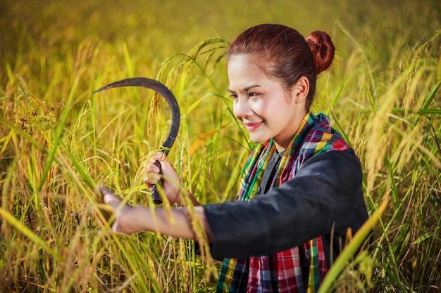 フィールドで米を収穫するために鎌を使用する女性農夫