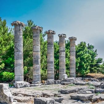 Храм афины полиас в древнем приене, турция