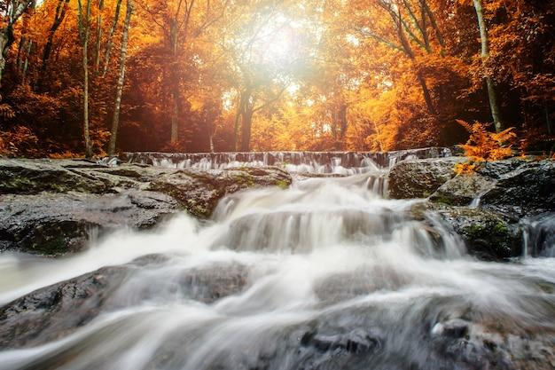 黄色い森の中の滝と青い流れタイ