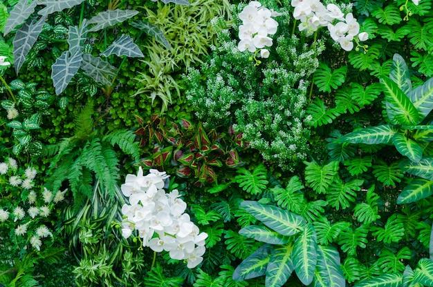 トロピカルジャングル、豊かな緑の植物と同様に、シダ、ヤシの木の葉