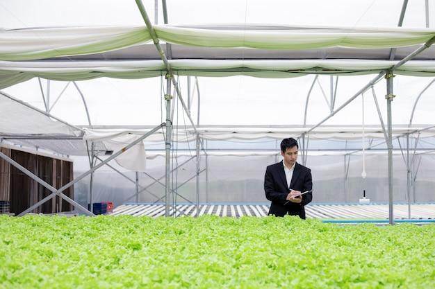 Бизнесмены изучают и записывают отчеты о качестве органических овощей.