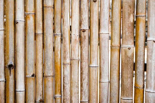 背景の竹のフェンス。