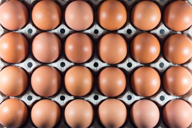 パネルのホワイトペーパーで農場からの新鮮な卵。