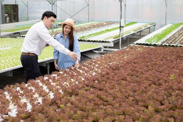 男性検査官が有機野菜の品質を検査し記録し、女性農家が指導を行います。