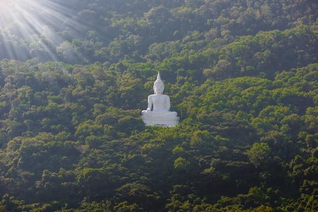 Белая статуя будды