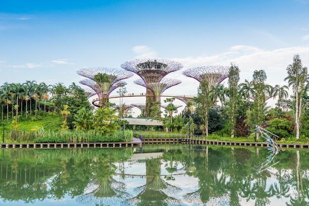 ガーデンバイザベイの素晴らしいイルミネーションの未来的な景色