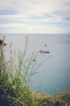 草の花と海の背景
