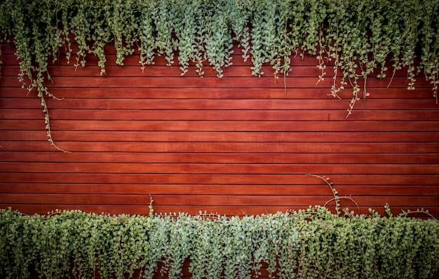 葉とオレンジの木造壁