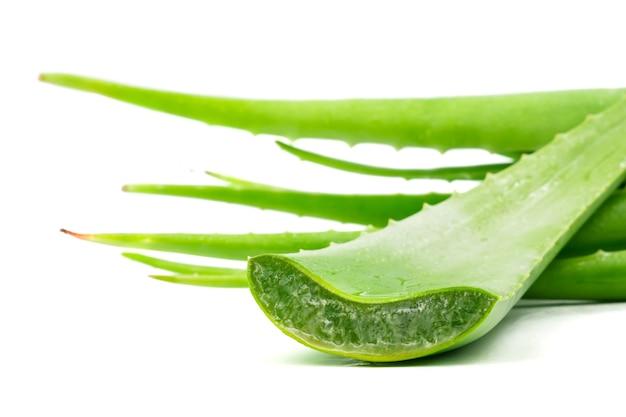 アロエベラは皮膚治療として伝統的な医学で使用されています。