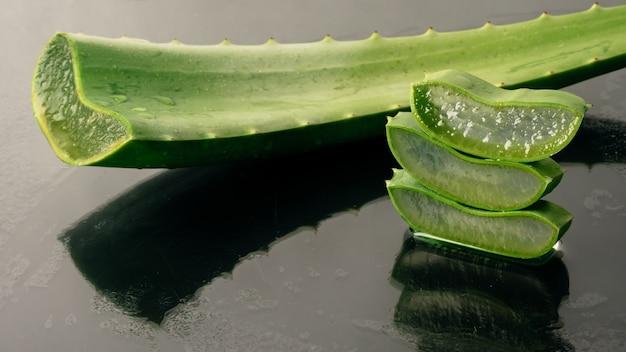 アロエベラ植物。アロエベラは皮膚治療として伝統的な医学で使用されています。