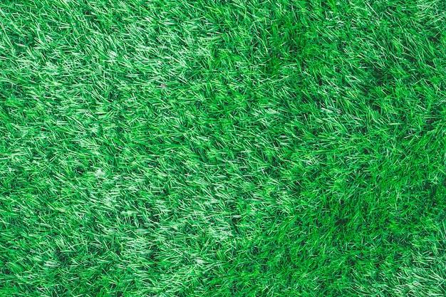 緑色の草の背景。