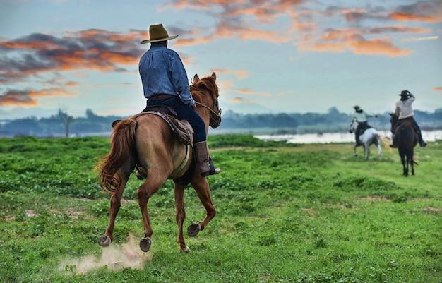 Ковбой на лошадях. ранчо