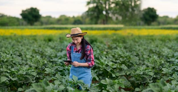 緑の植物の品質をチェックする若いアジア女性農家。現代の水耕栽培