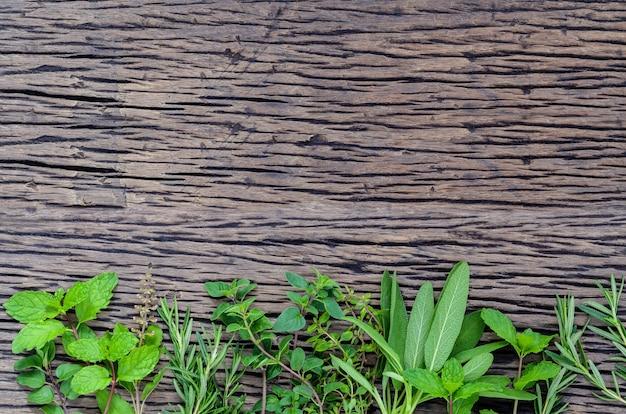 木製の素朴な背景に新鮮な緑のハーブ。