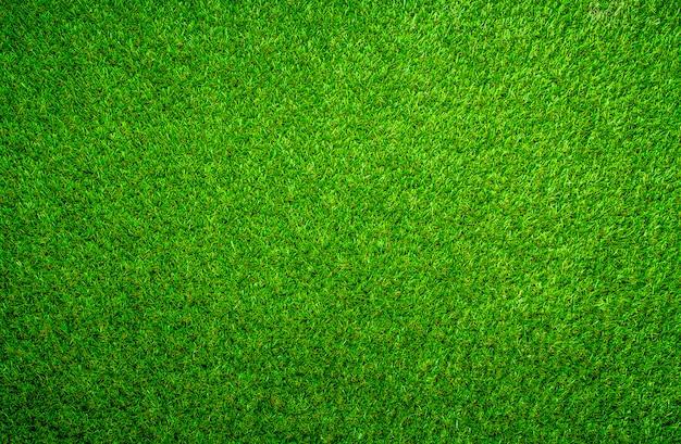 緑の芝生の背景