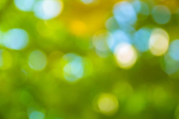 自然の緑ボケ抽象的な背景