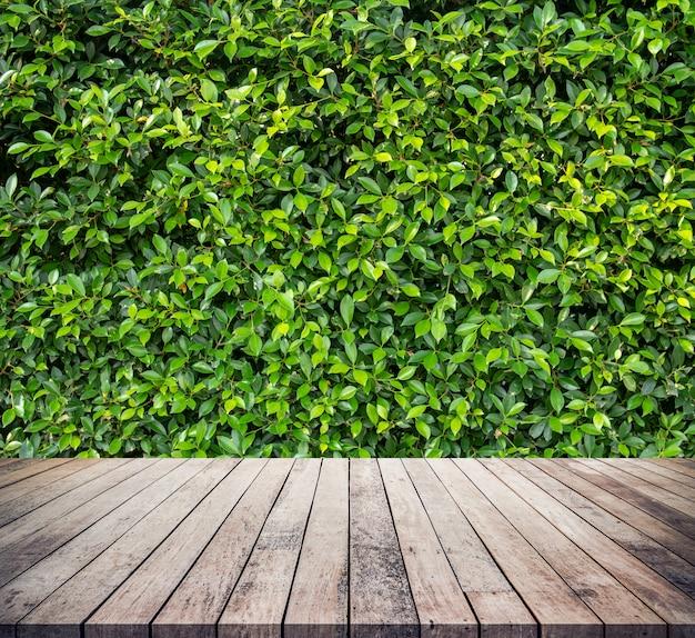 製品の表示のための抽象的な自然な緑の葉の背景を持つ古い木の板