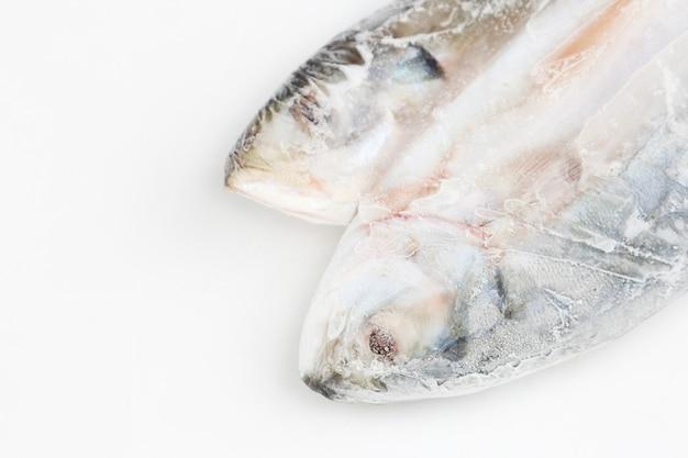 氷の上で新鮮な魚料理