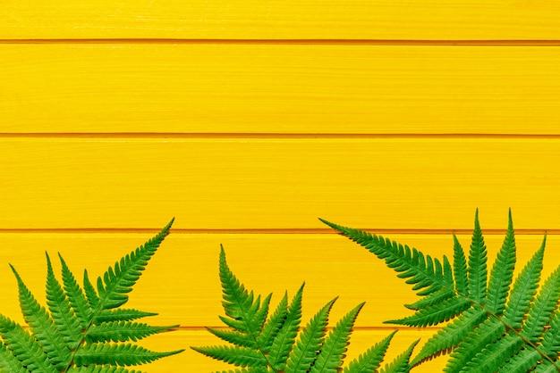 黄色の木の質感にタイのシダ熱帯植物の緑色